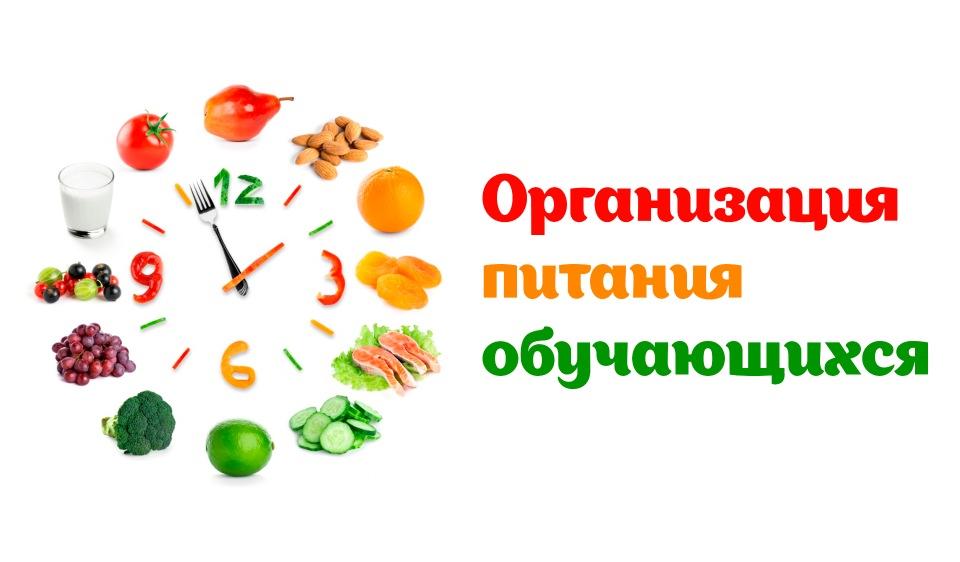 Организация школьного питания